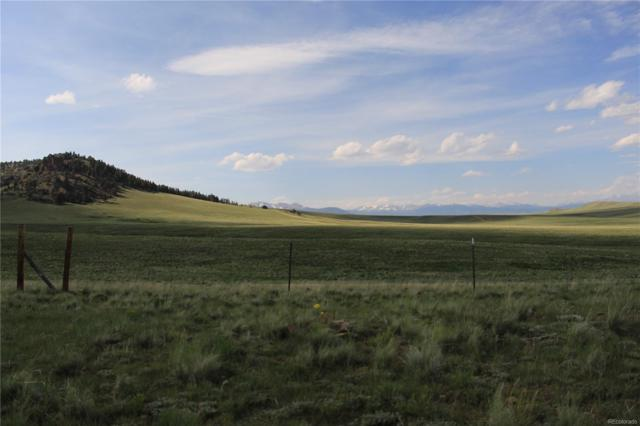 1108 Sievers Drive, Como, CO 80432 (MLS #6907358) :: 8z Real Estate