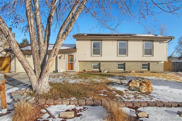 9734 Columbine Court, Thornton, CO 80229 (#6908126) :: The Colorado Foothills Team | Berkshire Hathaway Elevated Living Real Estate