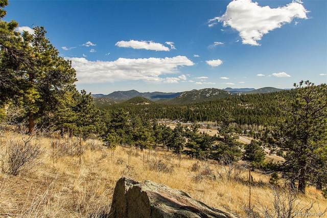 34077 Cactus Drive, Evergreen, CO 80439 (#6908251) :: The DeGrood Team