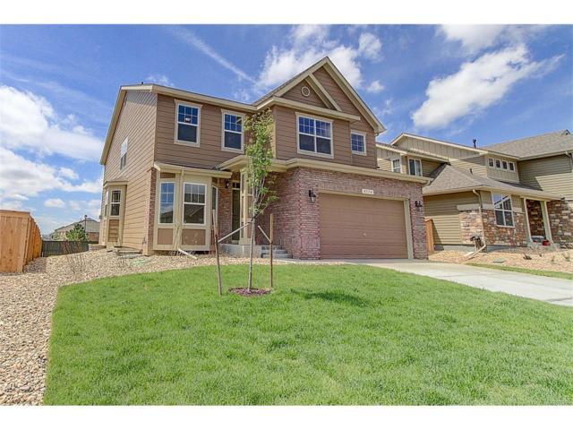 8176 E 137th Drive, Thornton, CO 80602 (MLS #6909153) :: 8z Real Estate
