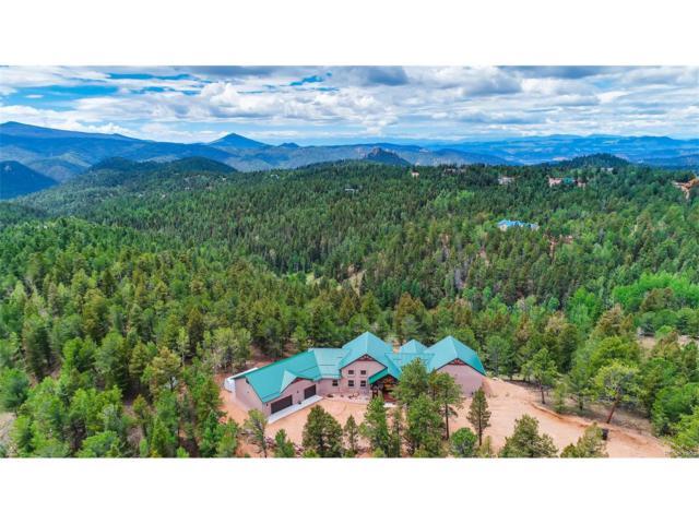 252 Running Elk Point, Divide, CO 80814 (MLS #6910072) :: 8z Real Estate