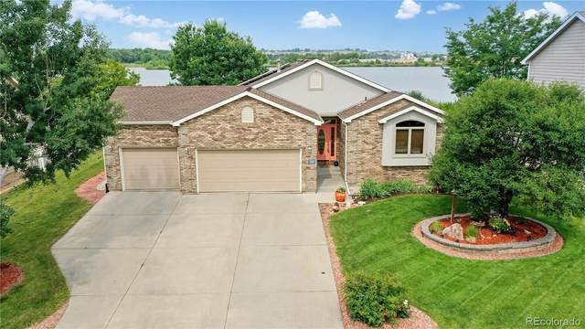 530 Lakewood Court, Windsor, CO 80550 (#6914677) :: The Dixon Group