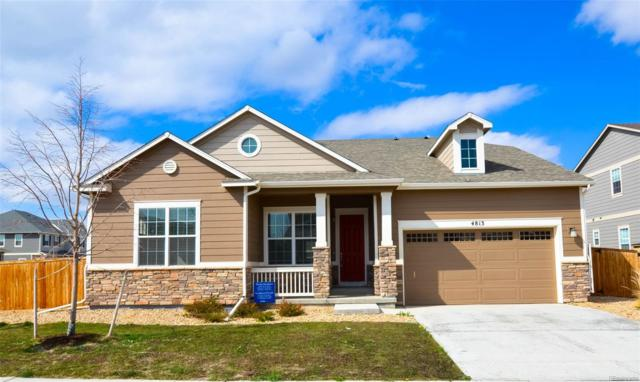 4813 E 142nd Place, Thornton, CO 80602 (#6914958) :: The DeGrood Team