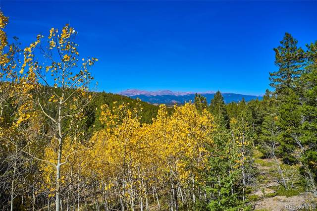 0 Lupine Place, Black Hawk, CO 80466 (#6916235) :: Real Estate Professionals