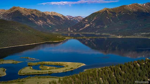 2261 Meteor Placer, Twin Lakes, CO 81251 (#6920251) :: Finch & Gable Real Estate Co.