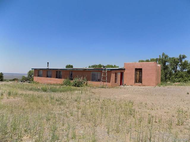 12591 Michaels Road, Fort Garland, CO 81133 (MLS #6920696) :: Neuhaus Real Estate, Inc.