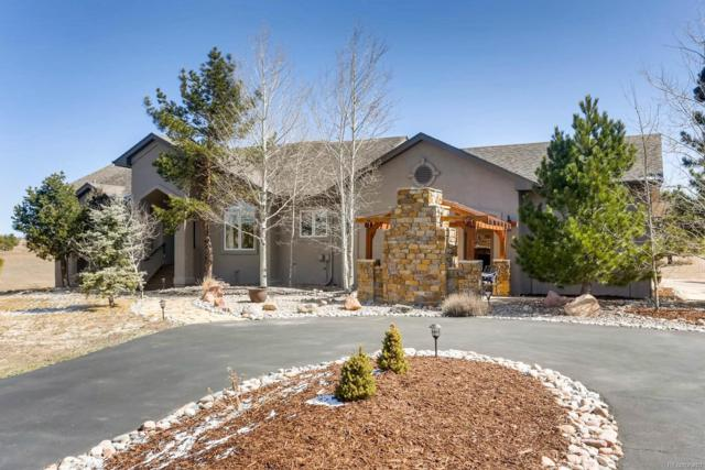 19175 Pagentry Place, Monument, CO 80132 (#6920926) :: The Peak Properties Group