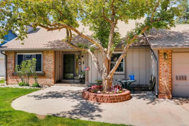 8233 W Plymouth Place, Littleton, CO 80128 (#6921776) :: 5281 Exclusive Homes Realty