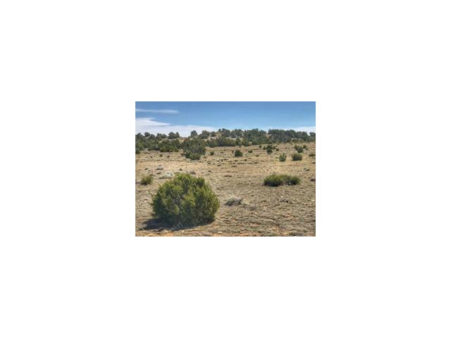 Lot 111 Greenhorn Village, Walsenburg, CO 81089 (#6923376) :: The DeGrood Team