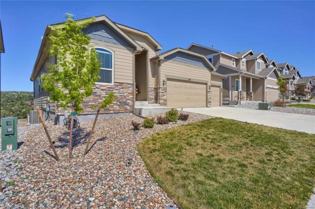 828 Gold Canyon Road, Monument, CO 80132 (MLS #6924203) :: 8z Real Estate