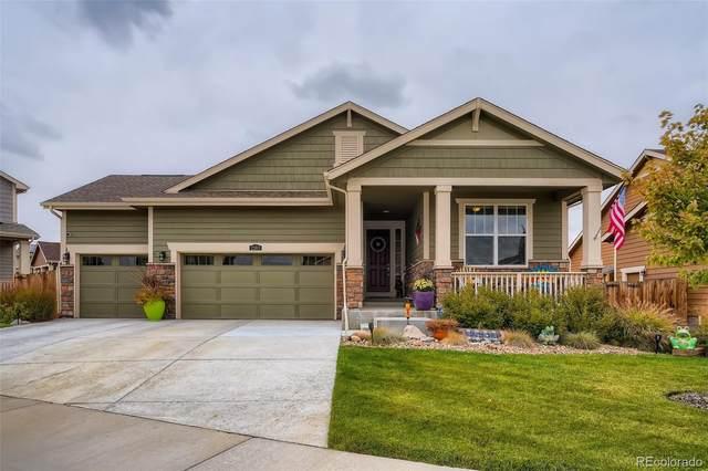 2383 E 161st Court, Thornton, CO 80602 (MLS #6924295) :: Find Colorado Real Estate