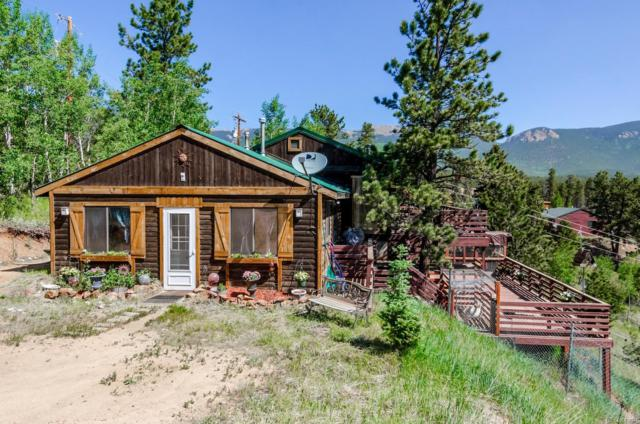 341 Bristlecone Circle, Bailey, CO 80421 (#6927027) :: The DeGrood Team