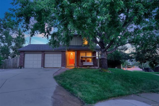 8630 Avens Circle, Colorado Springs, CO 80920 (#6929932) :: The Healey Group