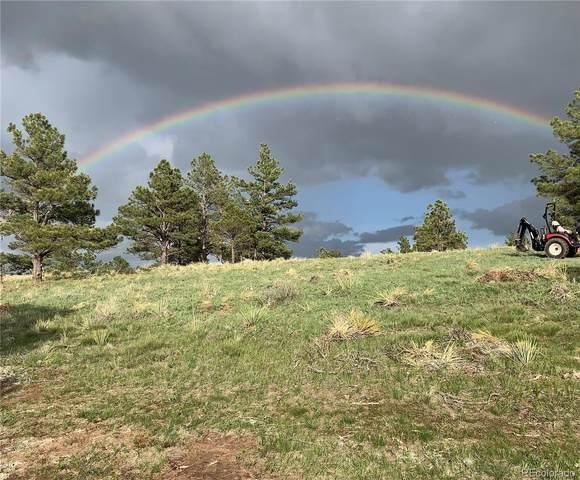 22429 Amethyst Road, Deer Trail, CO 80105 (MLS #6930159) :: Bliss Realty Group