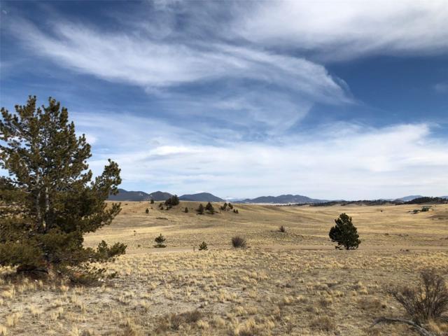 1566 Navajo Trail, Hartsel, CO 80449 (#6935476) :: The DeGrood Team