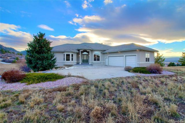 529 Summer Mist Circle, Castle Rock, CO 80104 (#6937371) :: Sellstate Realty Pros