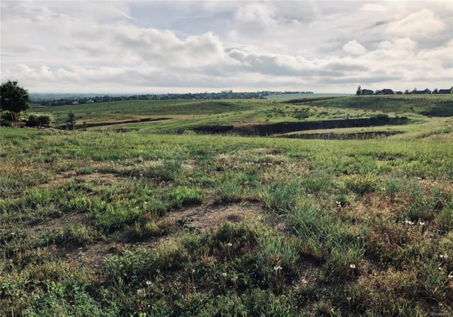 6048 Stone Chase Court, Windsor, CO 80550 (MLS #6937947) :: Colorado Real Estate : The Space Agency