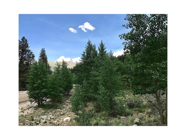 Buckskin Road, Alma, CO 80420 (MLS #6944301) :: 8z Real Estate