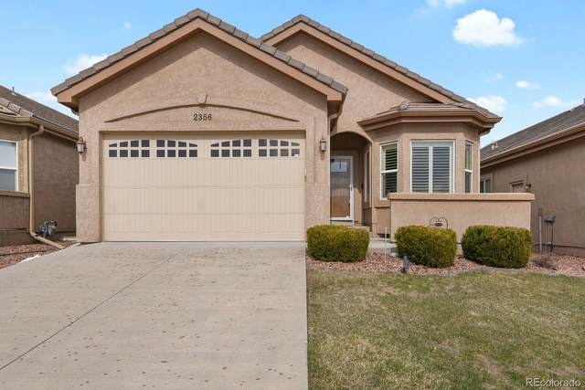 2356 Creek Valley Circle, Monument, CO 80132 (#6945087) :: Wisdom Real Estate