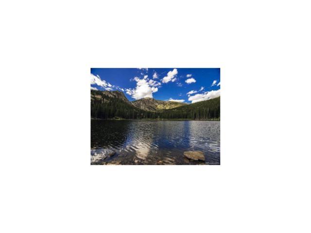 Lot 7, Idaho Springs, CO 80452 (MLS #6948903) :: 8z Real Estate