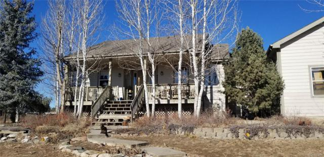9005 E 159th Avenue, Brighton, CO 80602 (#6949821) :: The City and Mountains Group