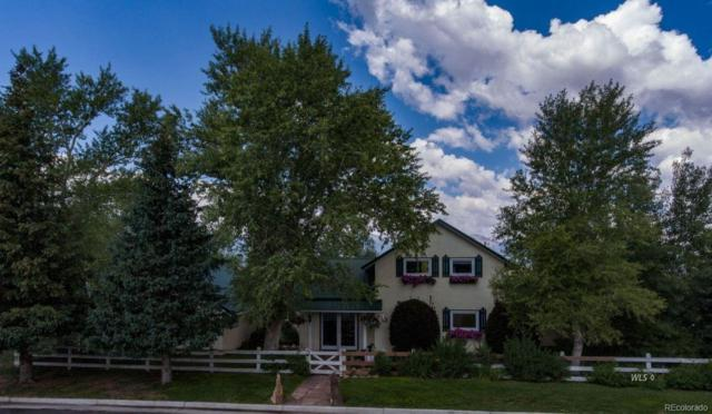 404 S 2nd Street, Westcliffe, CO 81252 (#6951054) :: The Heyl Group at Keller Williams