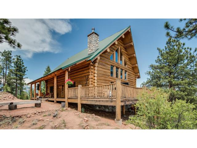 32937 Red Sparrow Trail, Pine, CO 80470 (MLS #6951131) :: 8z Real Estate