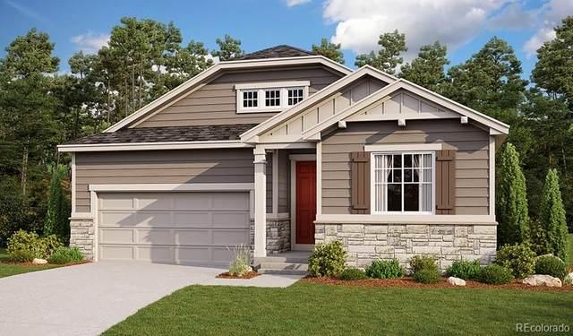 5153 Ditmars Trail, Castle Rock, CO 80104 (#6955855) :: Briggs American Properties