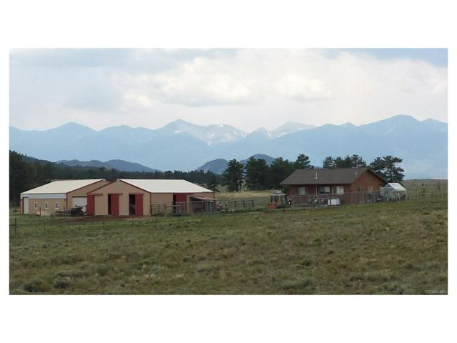 83 Wendy Drive, Cotopaxi, CO 81223 (MLS #6956648) :: 8z Real Estate