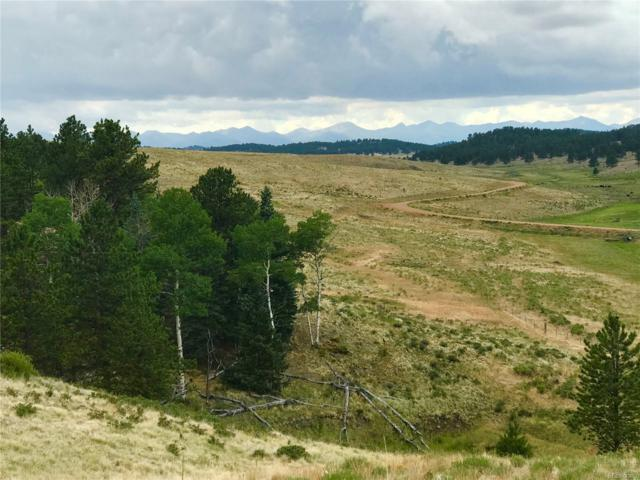 Eagle Valley Rd., Westcliffe, CO 81252 (#6957228) :: Bring Home Denver with Keller Williams Downtown Realty LLC