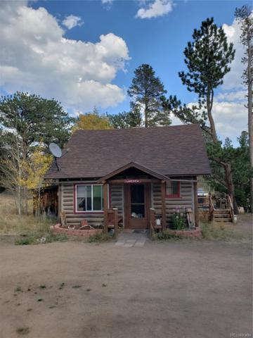 11561 Peak To Peak Drive, Allenspark, CO 80027 (#6958386) :: Wisdom Real Estate