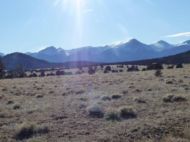 731 Cr 30, Cotopaxi, CO 81223 (MLS #6960639) :: 8z Real Estate