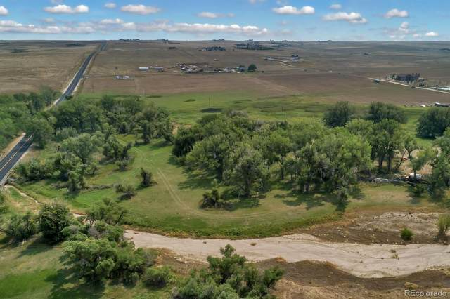 47875 County Road 29, Elizabeth, CO 80107 (#6961066) :: The Scott Futa Home Team