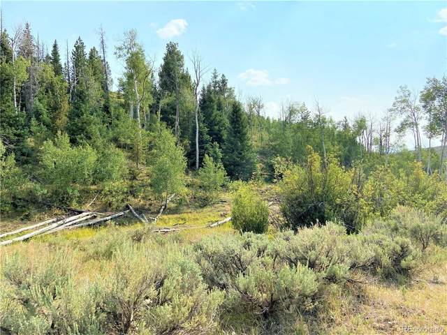 80 Acres County Road 6A, Yampa, CO 80483 (MLS #6963246) :: Neuhaus Real Estate, Inc.