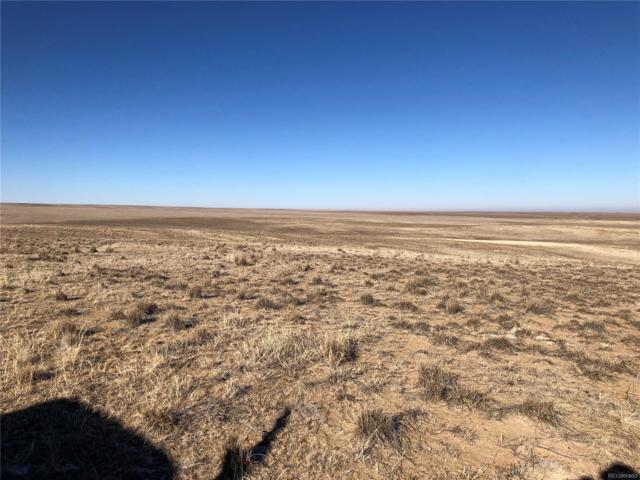 4 County Road 170, Agate, CO 80101 (#6965239) :: The Heyl Group at Keller Williams