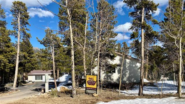 156 Lodge Pole Way, Black Hawk, CO 80422 (MLS #6968390) :: 8z Real Estate