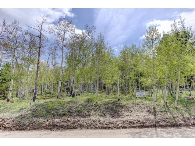 Chalet Park Dr., Black Hawk, CO 80422 (MLS #6968847) :: 8z Real Estate