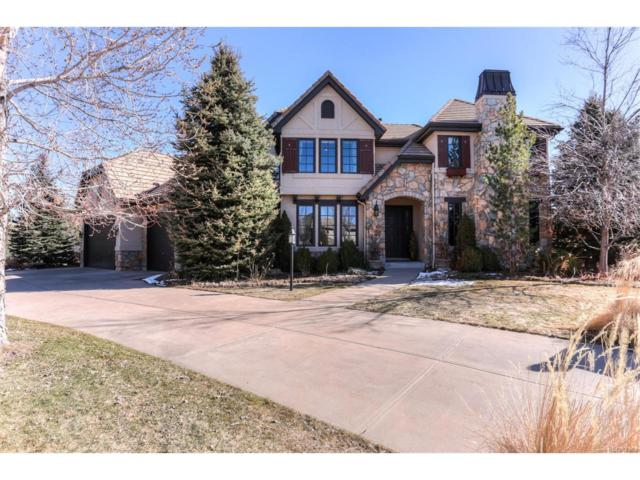 9339 E Star Hill Trail, Lone Tree, CO 80124 (#6971617) :: The Thayer Group