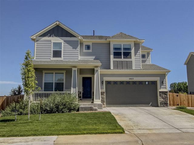 3977 Sandoval Street, Brighton, CO 80601 (MLS #6972861) :: 8z Real Estate