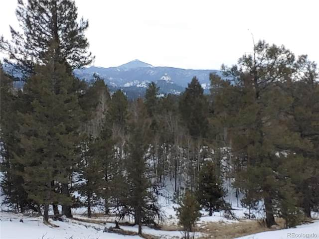 42 E Nevada Circle, Florissant, CO 80816 (MLS #6973252) :: 8z Real Estate