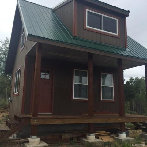 59 Chamber Lane, Como, CO 80432 (#6974800) :: Structure CO Group