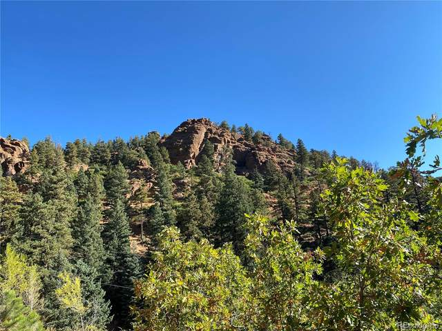 177 Upper Sun Valley Lane, Manitou Springs, CO 80829 (#6975028) :: iHomes Colorado