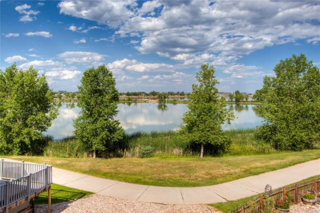 942 Durum Court, Windsor, CO 80550 (#6977050) :: The Griffith Home Team