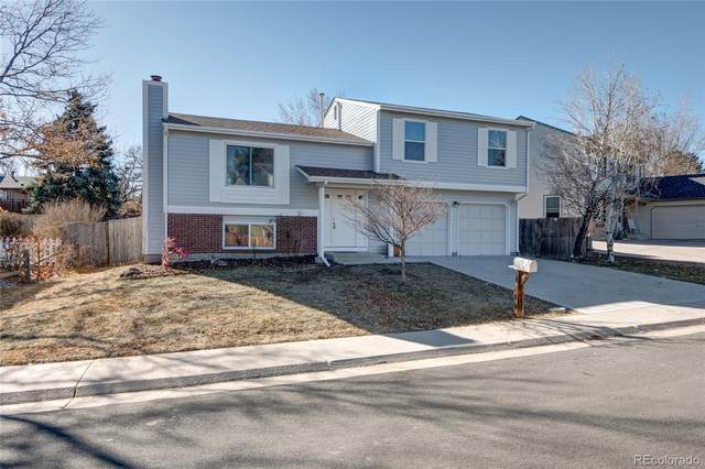 10620 W 103rd Avenue, Westminster, CO 80021 (#6978069) :: The DeGrood Team