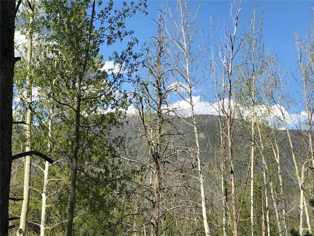 134 Mad Moose Lane, Grand Lake, CO 80447 (#6979150) :: The HomeSmiths Team - Keller Williams