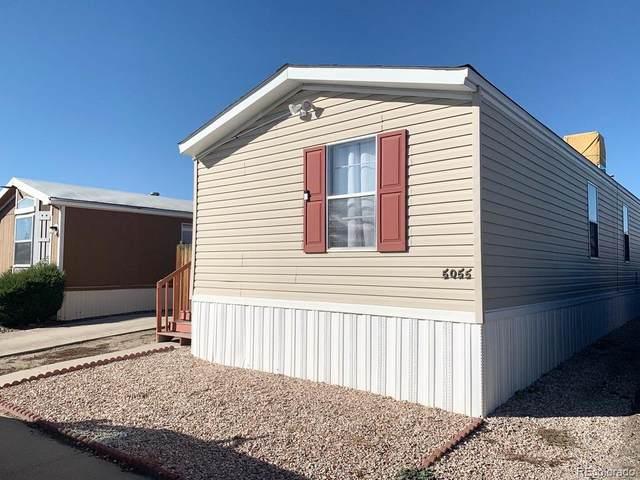 5055 Riverdale Avenue, Denver, CO 80229 (#6979884) :: Wisdom Real Estate