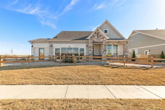 15619 Syracuse Way, Thornton, CO 80602 (MLS #6983162) :: 8z Real Estate
