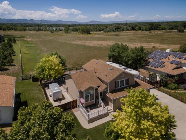 7119 S Clay Street, Littleton, CO 80120 (#6985054) :: The Healey Group
