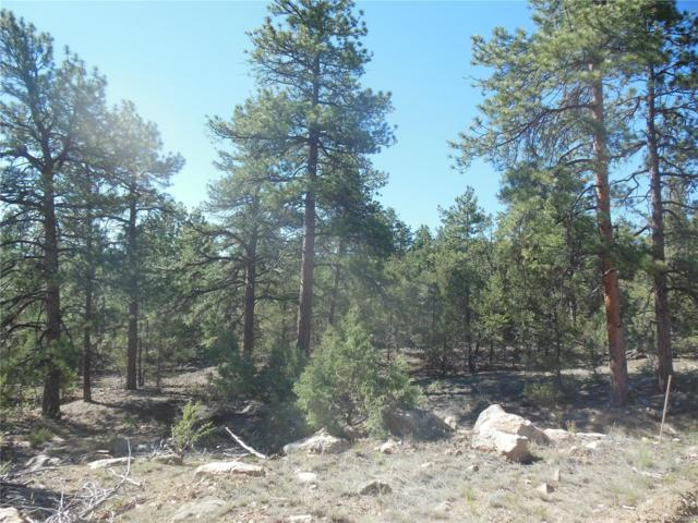 000 Pronghorn Path, Cotopaxi, CO 81223 (MLS #6986194) :: 8z Real Estate