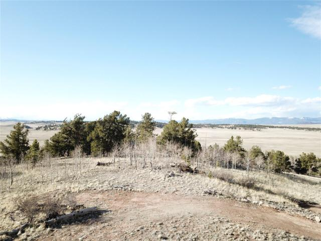 333 Sioux Trail, Hartsel, CO 80449 (MLS #6986284) :: 8z Real Estate